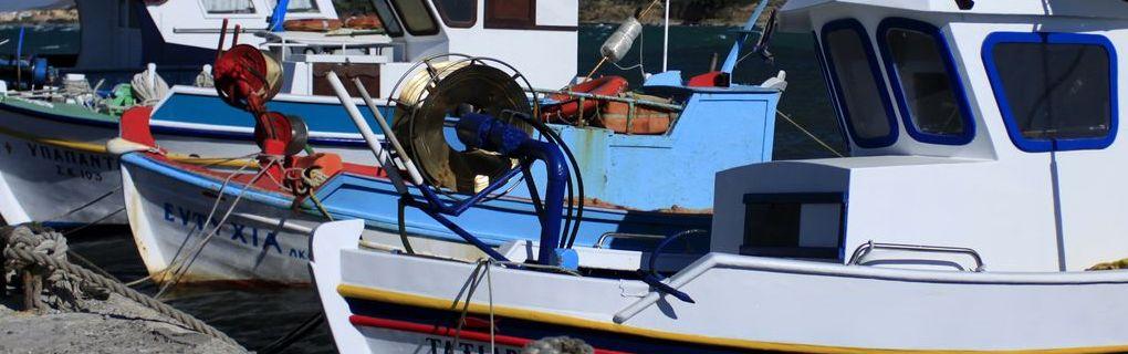 В порту всегда много лодок. На фотографии обычные рыбацкие лодки добывающие свежайшие морепродукты.