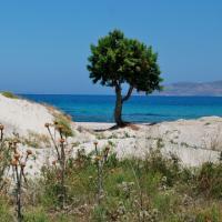 Мармари(Marmari) Остров Кос