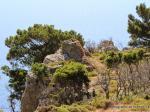 Виды на бухту Кефалоса Остров Кос
